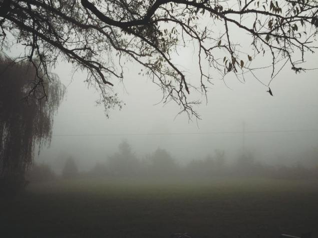 foggy-morning-oct-15-2015